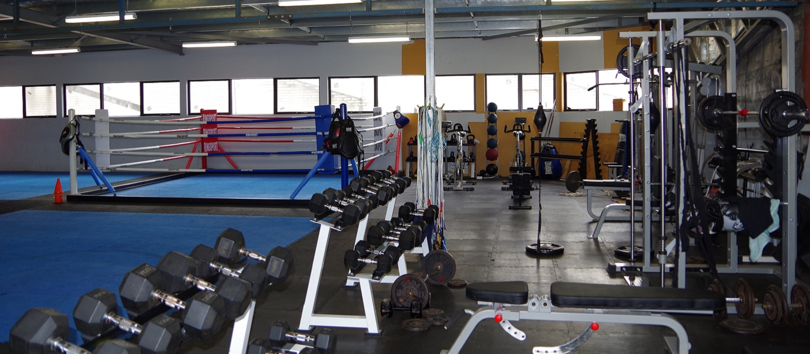 Premier Boxing Club-Perth, weights area