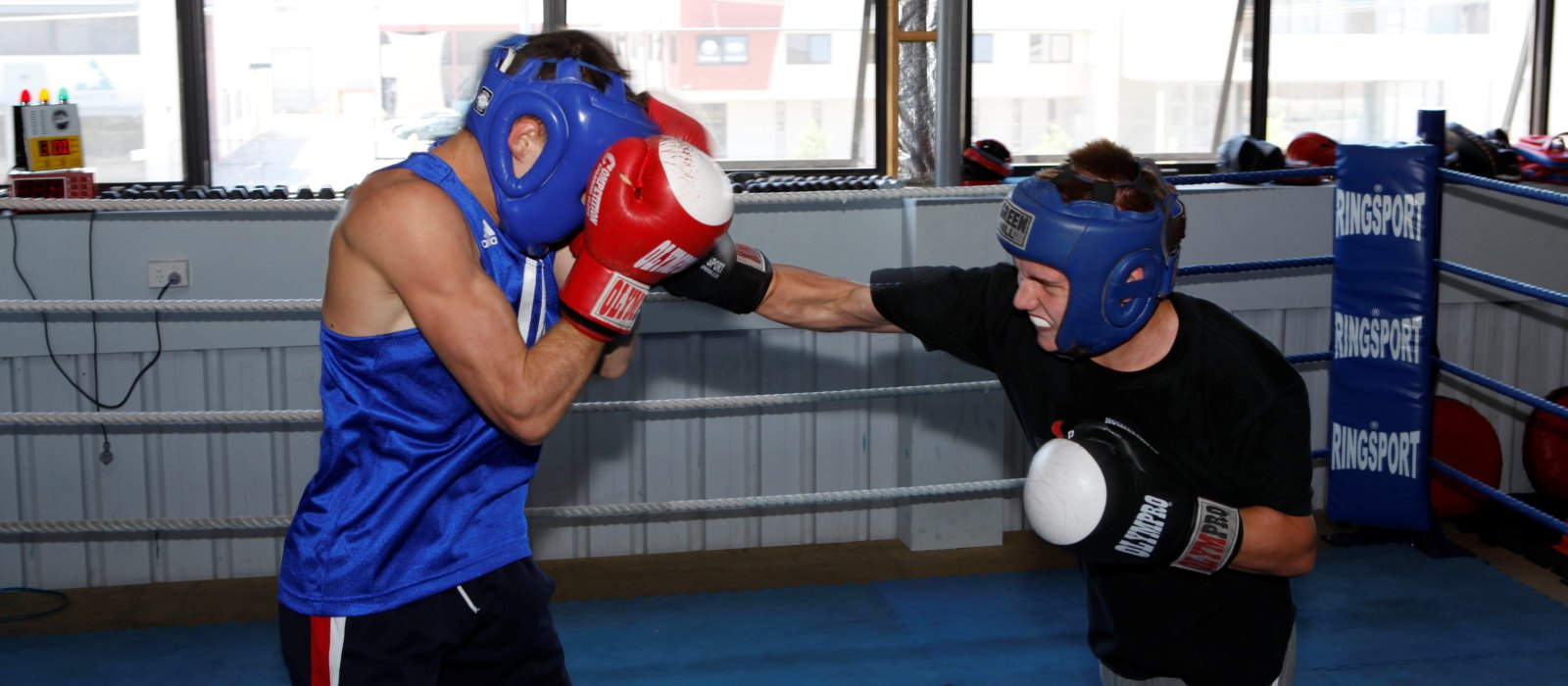 Two Australian champions boxing sparring